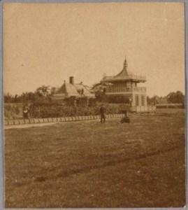 Column Pier van Leeuwen (1)